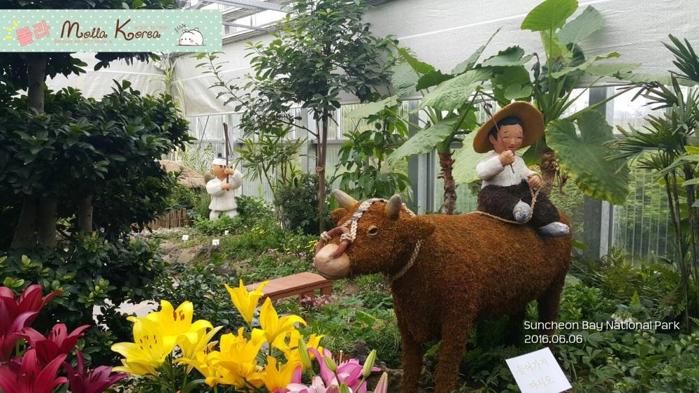 20160606 13 Korea Folks Cow Suncheon Bay National Park Molang Korea