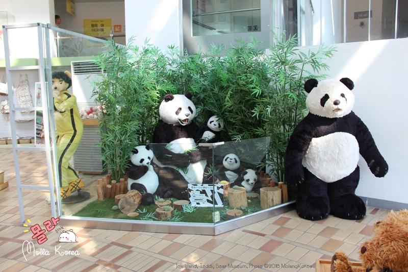 Jeju Island 20 Teddy Bear Museum Photo ©2018 MolangKorea